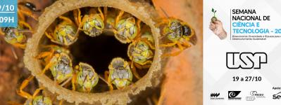 """Oficina """"Meu dia com abelhas nativas sem ferrão"""" - SNCT 2019"""